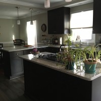 Kitchen Renovation / Remodel