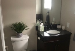 New vanity, fixtures, and toilet